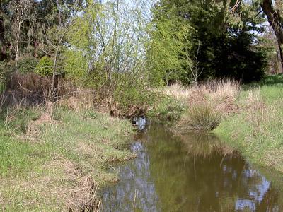 Five Creek