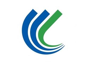 Flag Of Shinonsen