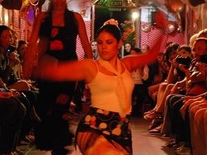 Sacromonte Caves Flamenco Show Photos