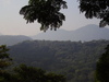 Tijuca National Park