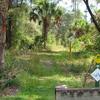 Florida Trail - Seminole State Forest
