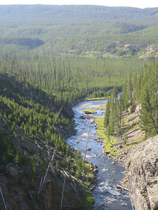 Flowing Through Yellowstone Park