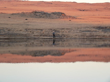 Fly-fishing At The Dullstroom Dam