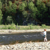 Fly Fishing On Chena River