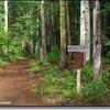 Foote Creek Trail