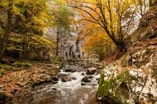 Forest - Bigar Waterfall - Romania