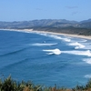 Forestry Beach - Te Arai Point - Northland