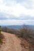 Fourche Mountain Trail