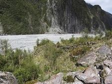 Fox Glacier Valley @ Tai Poutini NP - South Island NZ