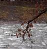 Frutz River