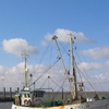 A Trawler In Nordstrand