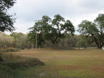 Remains Of Fort Gadsden