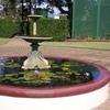 Fountain At Newstead House