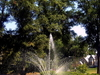 Francis Griffith  Newlands  Memorial Fountain