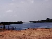 Reserva Tanji Bird