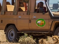Safari Abernai - Kenya