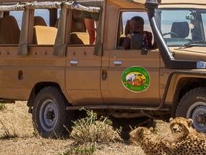 Safari Abernai - Kenya Fotos