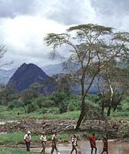 Game Walk In Kenya