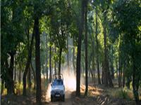 Gandhisagar Wildlife Sanctuary