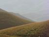 Gangamoola - Kudremukh National Park