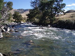 Gardner River - Angling - Yellowstone - Wyoming - USA