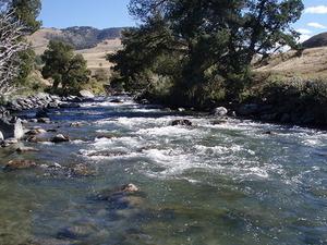 Gardner río