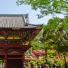 Gate At Nezu Shrine