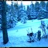 Autumn Creek Trail