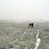 GenTrail-09 For Coal Creek Fire Trail - Glacier - Montana - United States