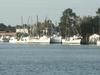 Shrimp Boats In Georgetown Harbor
