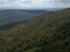 George Washington And Jefferson National Forests