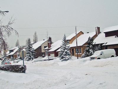 Greenfield Park Winter