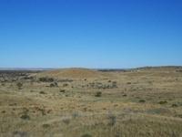Gibson Deserto