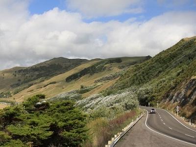 Gisborne Landscape - North Island NZ