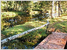 Gmöser Moor Nature Preserve