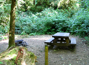 Gnat Creek Campground