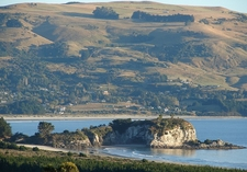 Goat Island Blueskin Bay - Otago Peninsula NZ