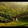 Exotic Kerala Holiday Package