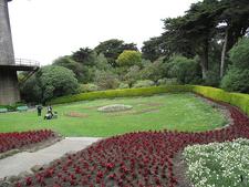 Golden Gate Park Landscape