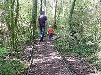 Gordon Park Scenic Reserve