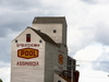 Grain Elevator In Assiniboia