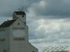 Grain Elevator In Theodore