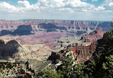 Grand Canyon North Rim View AZ