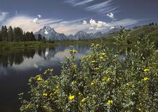 Grand Teton Snake River - Wyoming - USA