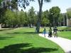 Grape Day Park