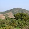 Grass Island Hilltop