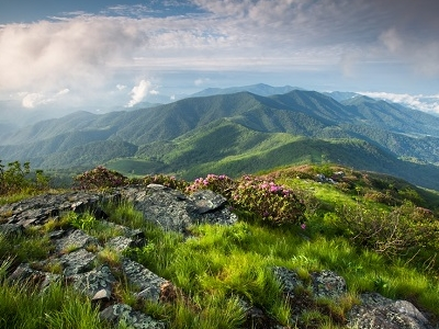 Grassy Ridge Spur Off Appalachian Trail - North Carolina