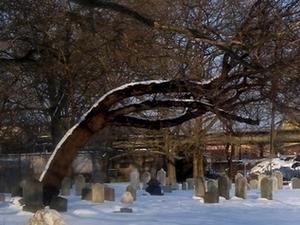 Antiguo Cementerio Gravesend
