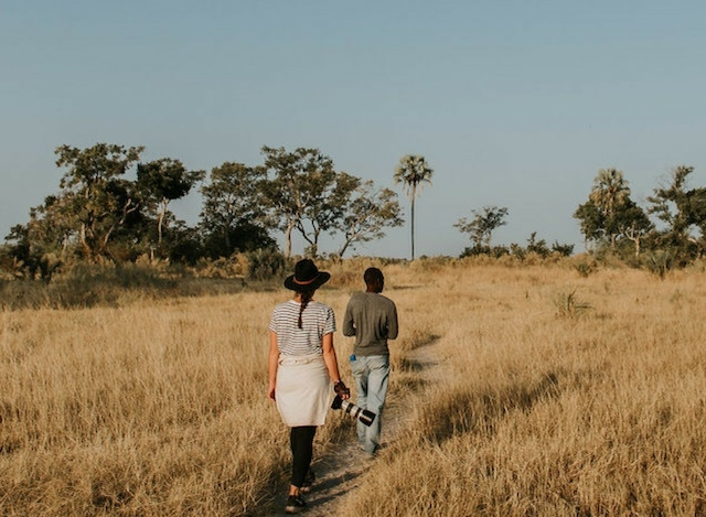Great Botswana Safari Photos