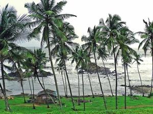 Best 4 Days Goan Fantasy Budget Deal Photos
